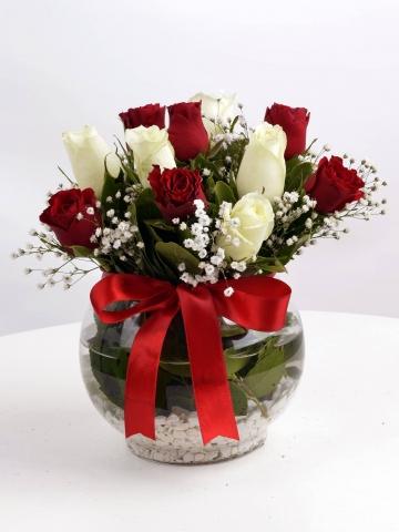 Fanus İçinde Kırmızı Beyaz Güller