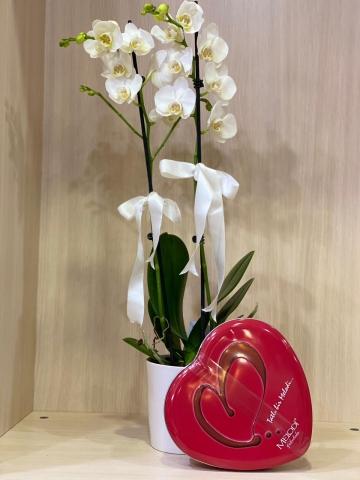 Kalp Çikolata ve Beyaz Orkide