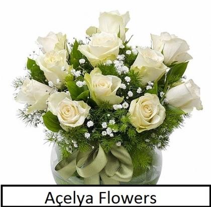 Fanus İçinde Beyaz güller