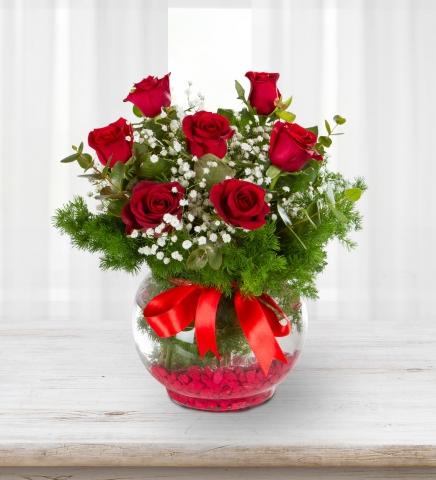 Fanus vazoda kırmızı güller
